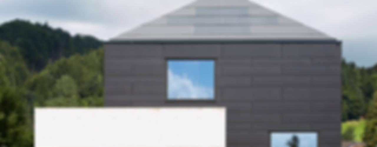 Haus A: modern  von hammer pfeiffer I architekten,Modern