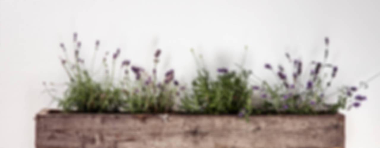 planter di edictum - UNIKAT MOBILIAR Rustico