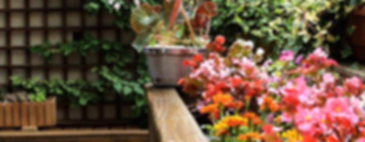 Varanda: Jardins modernos por Studio Gorski Arquitetura
