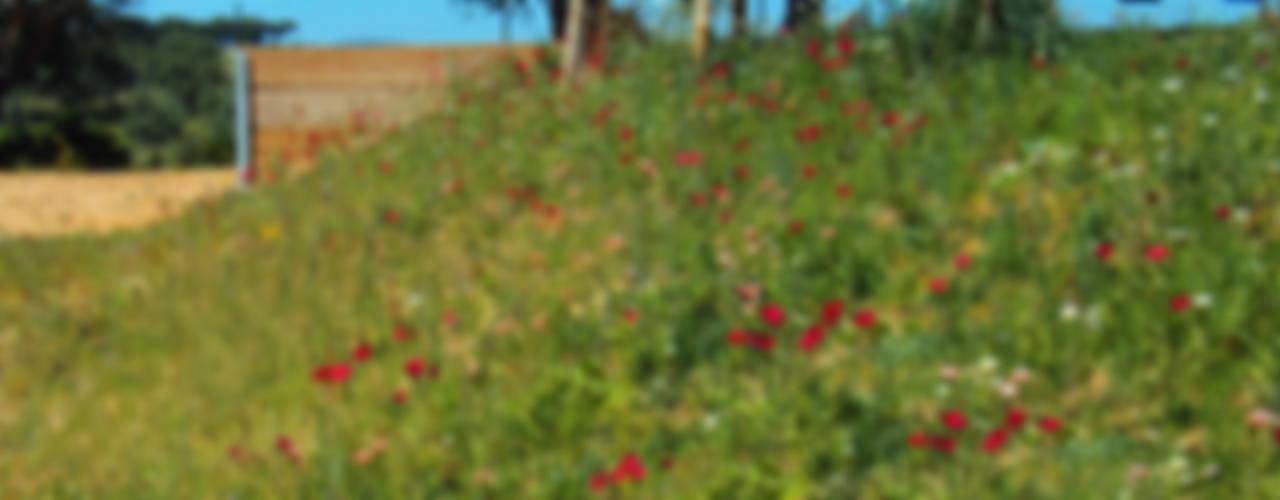 Moradia Privada: Jardins  por OpenGreen
