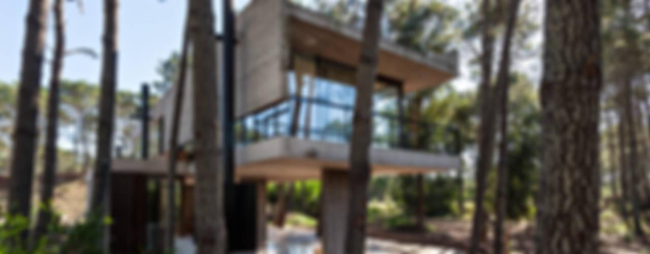 Houses by ATV Arquitectos