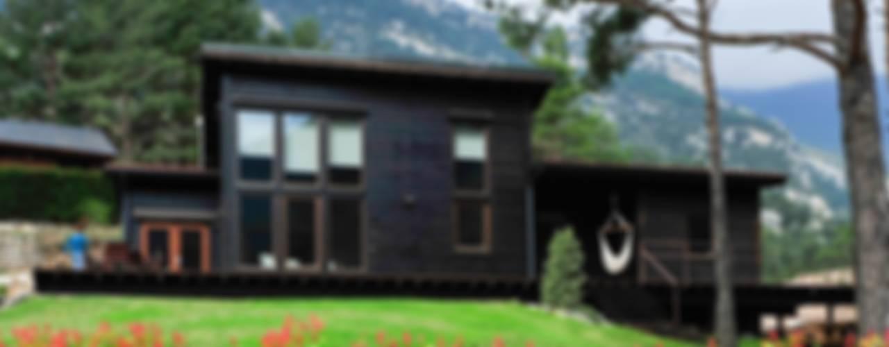 HOUSE HABITAT: modern tarz , Modern