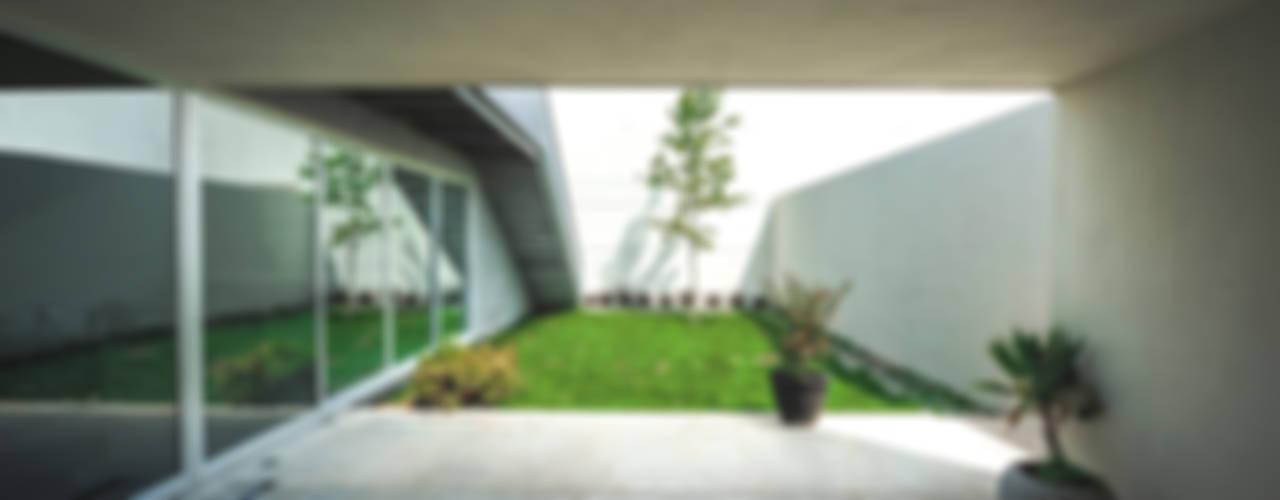 IPE HOUSE Modern garden by P+0 Arquitectura Modern
