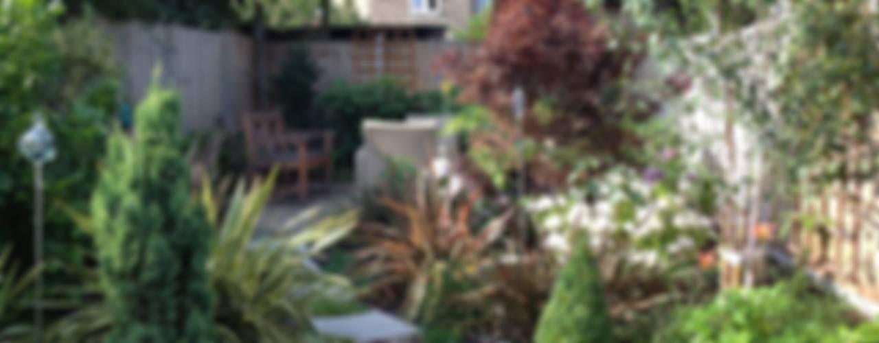 Victorian terrace house Garden Jardin classique par Schema Studio Limited Classique