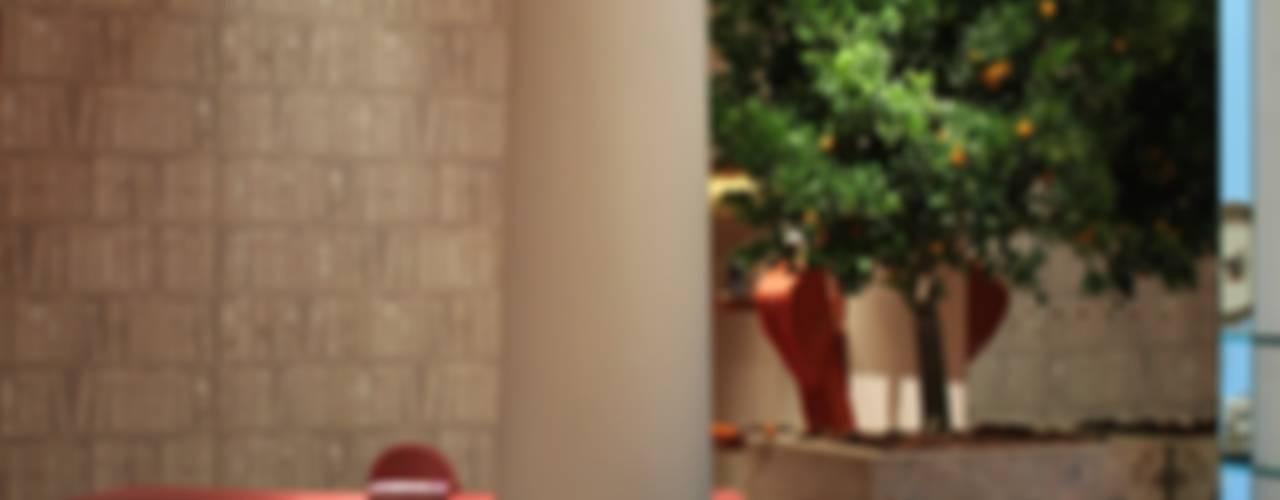 Piante succulente Sala da pranzo in stile classico di Tiziano Codiferro - Master Gardener Classico