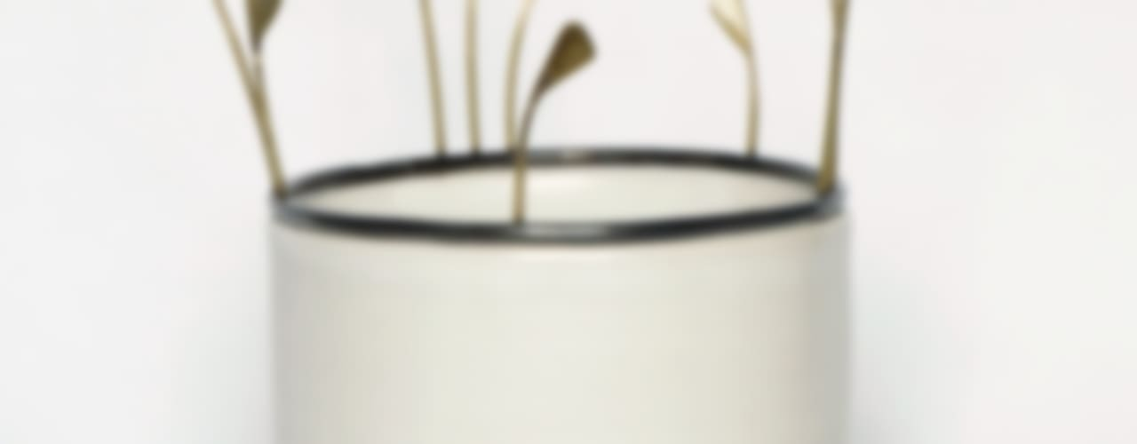 Plantules par CAROLINE WAGENAAR