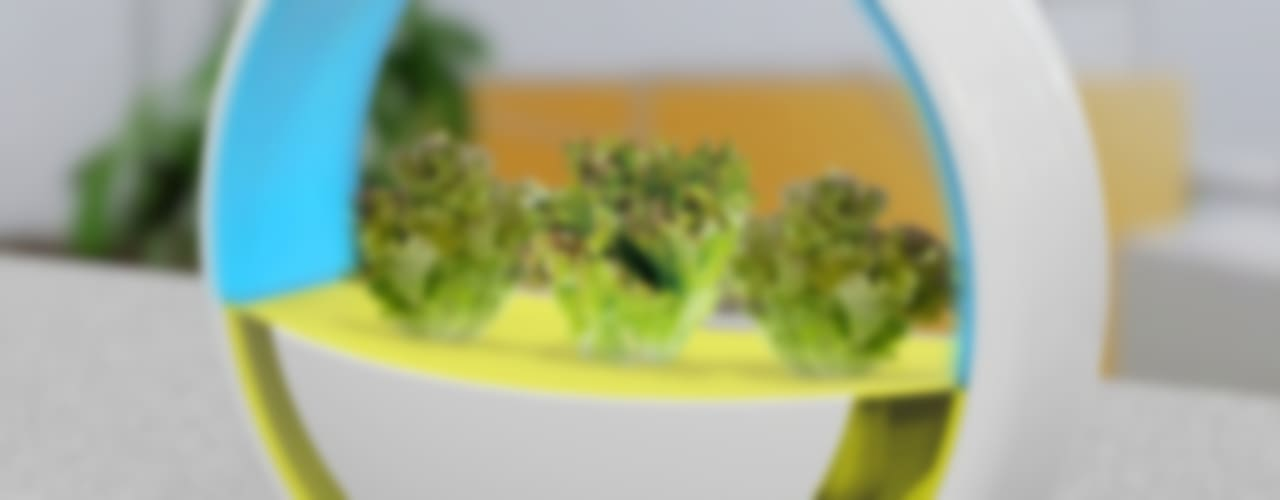 Kitchen Farm: SHIMIZ DESIGN STUDIOが手掛けた現代のです。,モダン