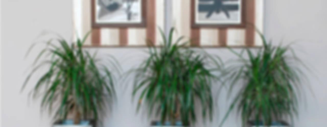 AIRE Paredes y suelos de estilo moderno de LA CASA DE LOS CUADROS Moderno