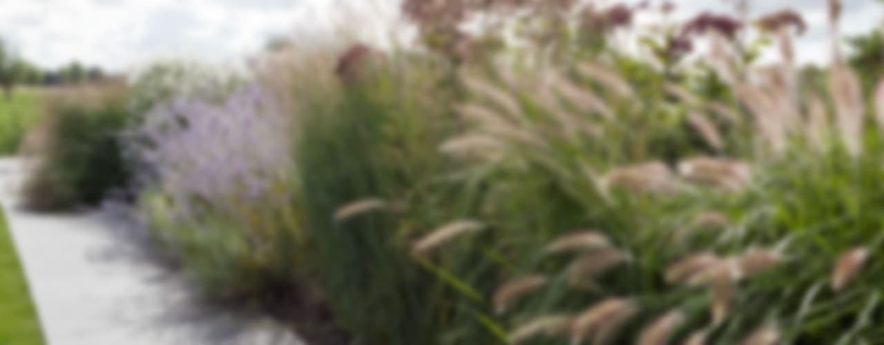 Poldertuin in Delft Minimalistische tuinen van Andrew van Egmond (ontwerp van tuin en landschap) Minimalistisch