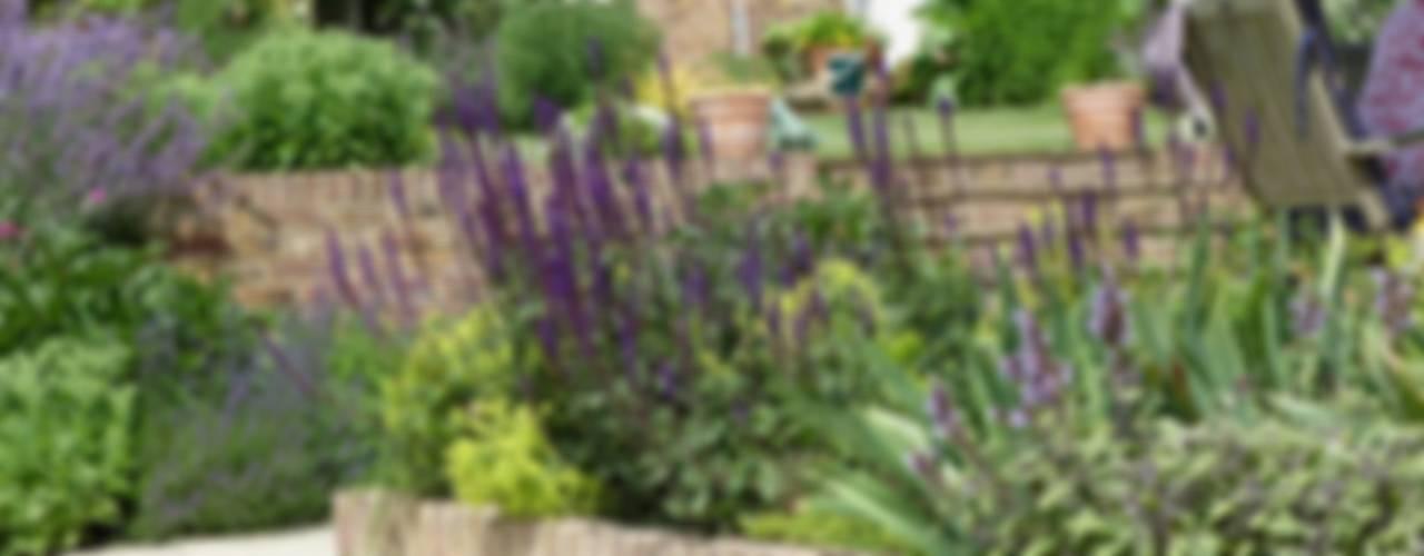 Garden for bees. Country style garden by Cherry Mills Garden Design Country