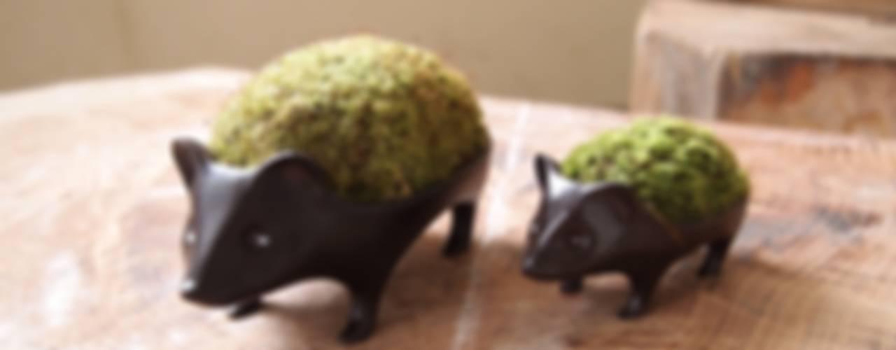 苔器: Aoki Yurikoが手掛けた現代のです。,モダン