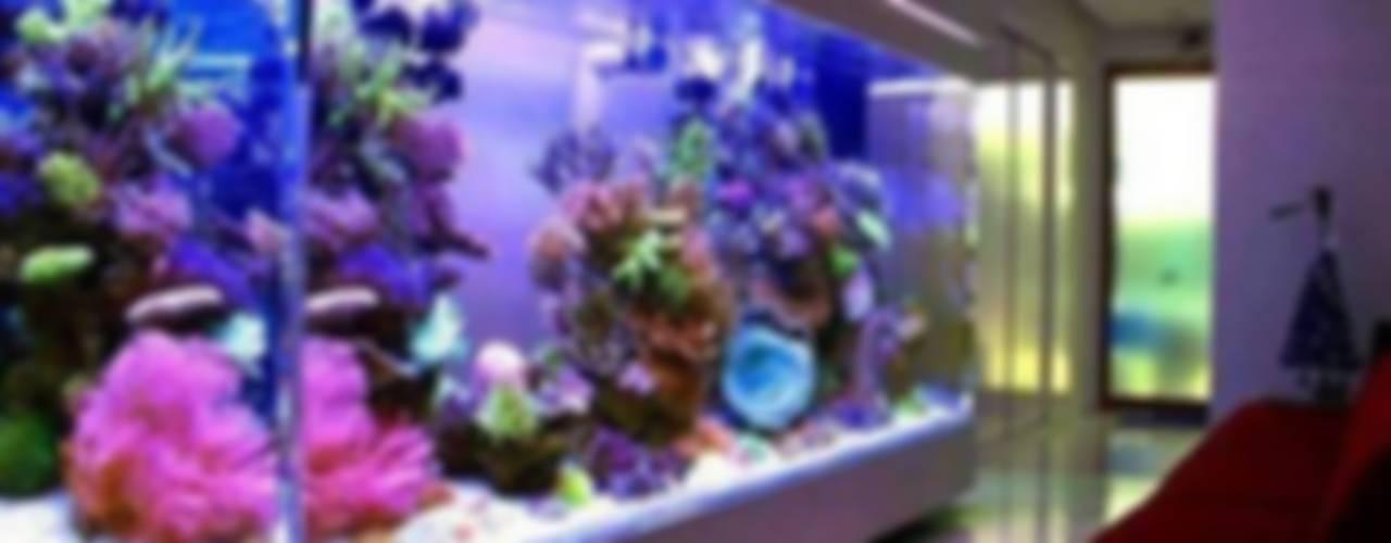 Аквариум морской:  в . Автор – Аквариумный салон 'Мир за стеклом'