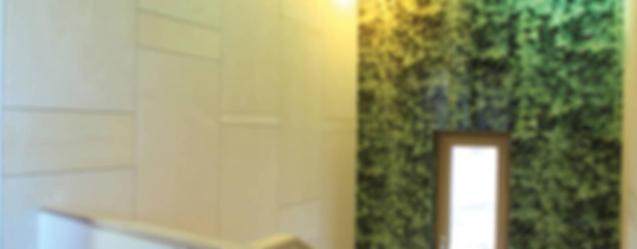 자작나무 패턴의 계단실: 주택설계전문 디자인그룹 홈스타일토토의  복도 & 현관