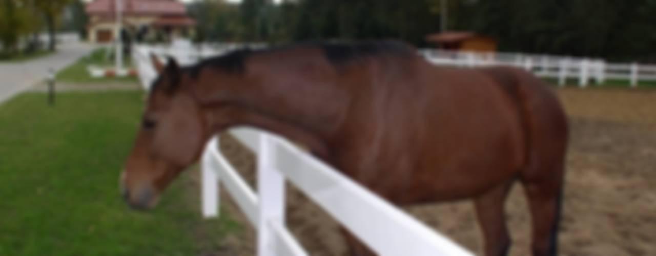 Ogrodzenia farmerskie (dla koni) Klasyczny ogród od Ogrodzenia PCV Klasyczny