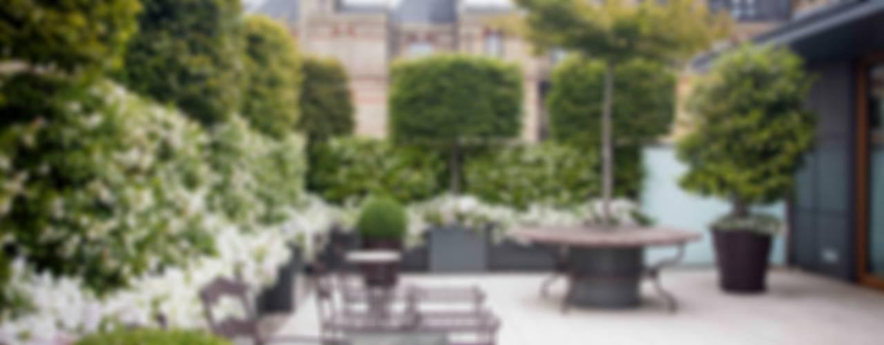 Belgravia Roof Terrace Сад в классическом стиле от Cameron Landscapes and Gardens Классический