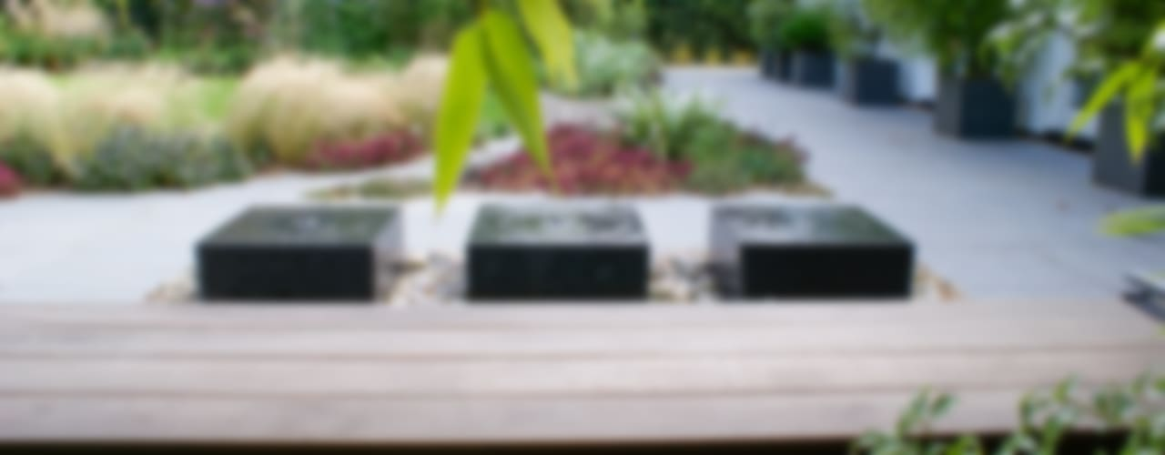 Jardins  por Rosemary Coldstream Garden Design Limited
