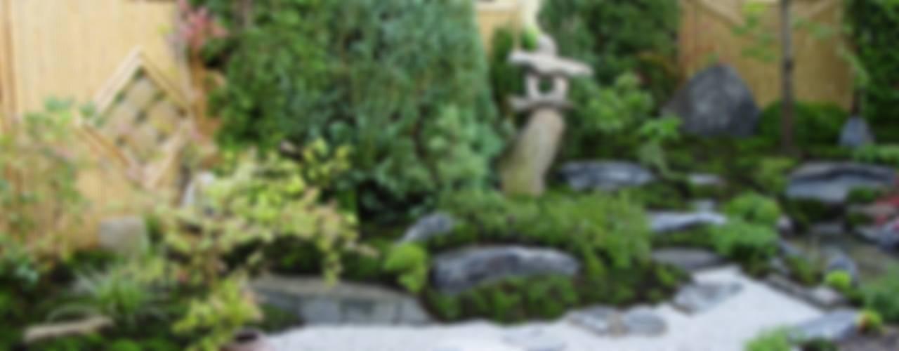 Kleiner Garten ganz Moos (Groß) Asiatischer Garten von Kokeniwa Japanische Gartengestaltung Asiatisch