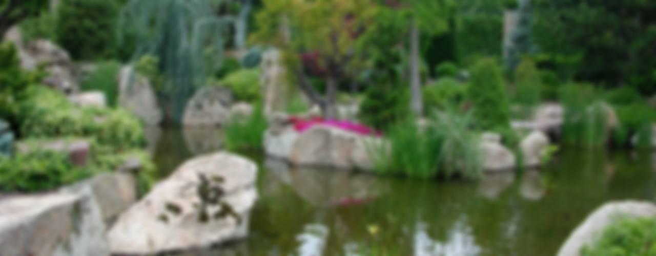 Estanque Jardines de estilo rústico de La ermita de Pozuelo Rústico