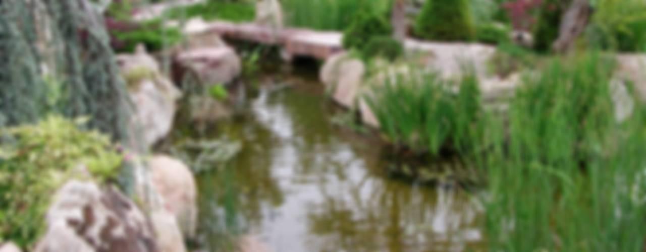 Jardines de estilo rústico de La ermita de Pozuelo Rústico