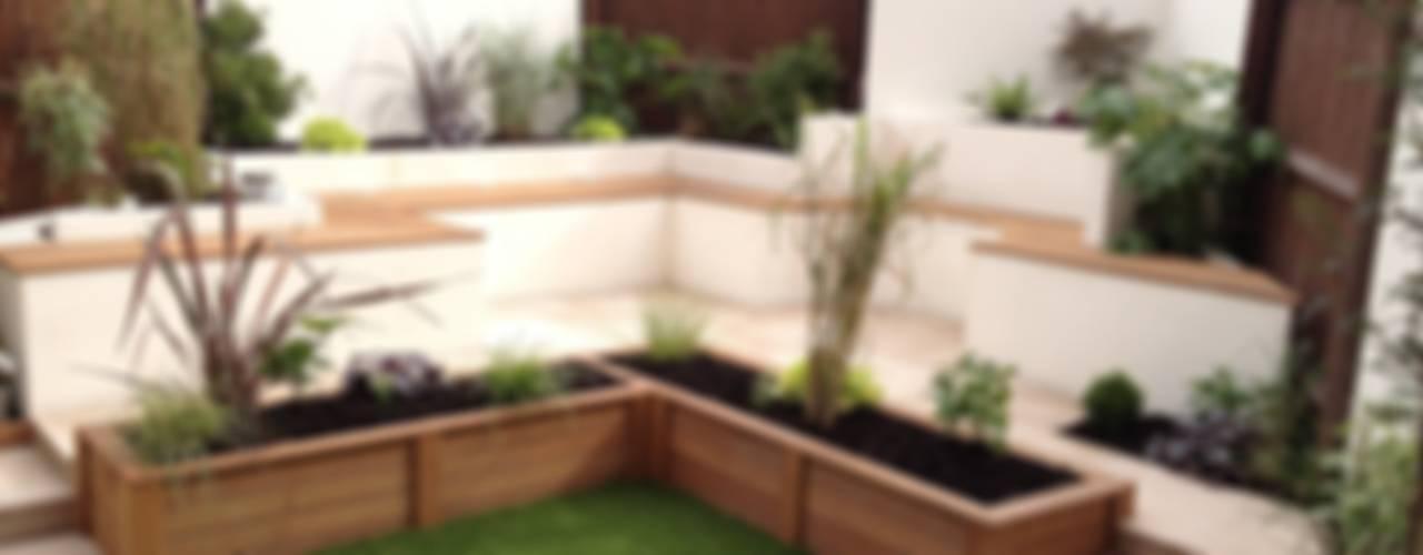 Contemporary Garden 모던스타일 정원 by Lush Garden Design 모던