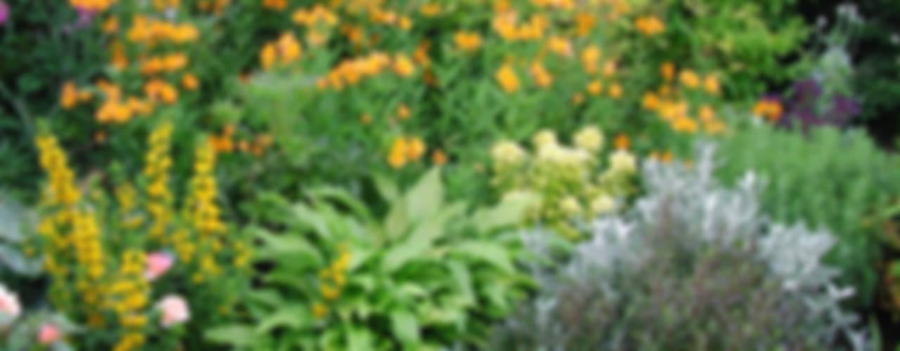 Garten von Anne Macfie Garden Design