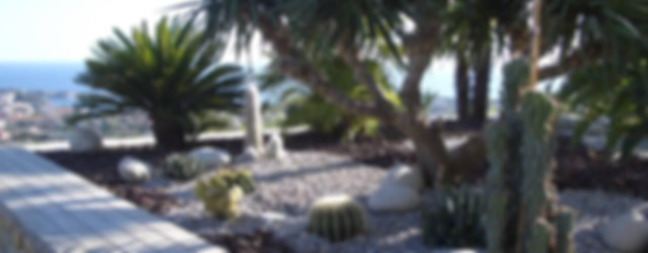 Un jardin contemporain, un balcon sur la mer: Jardin de style  par Vanessa Cottin, Moderne