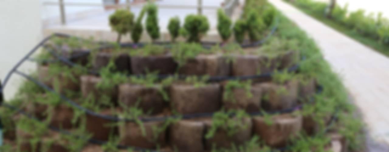 Asis Mimarlik Modern Bahçe asis mimarlık peyzaj inşaat a.ş. Modern