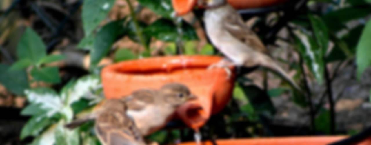 Damla Şelale – Bahçe Şelalesi:  tarz