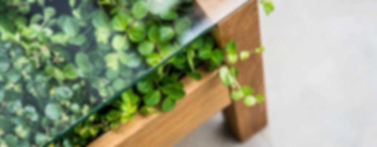 bio stolik POLLI: styl , w kategorii  zaprojektowany przez APPO projekt,Minimalistyczny