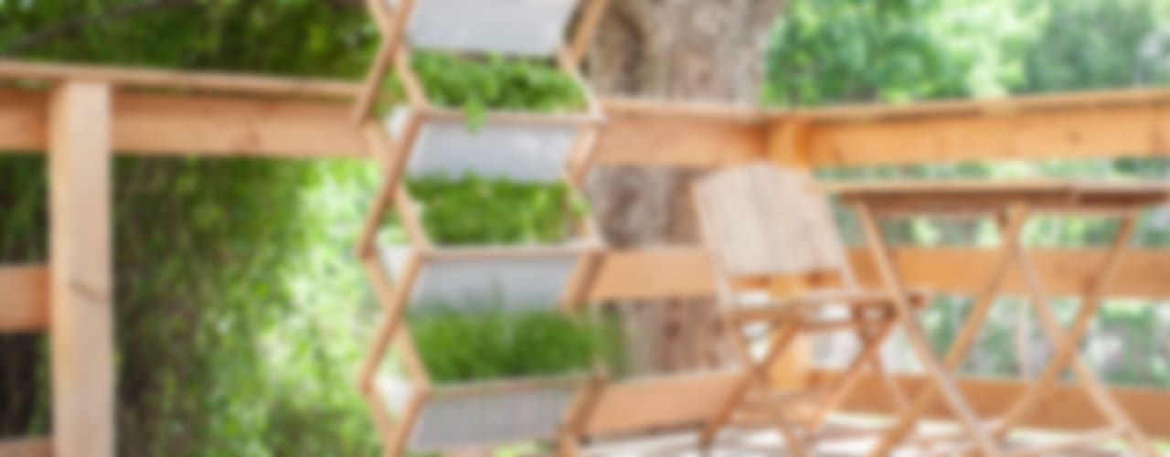 Jörg Brachmann Dipl. Designer (FH) Balconies, verandas & terraces Plants & flowers