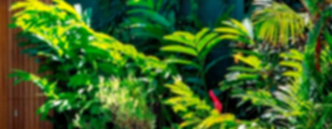 JPA Leblon Jardins tropicais por Landscape Paisagismo Tropical