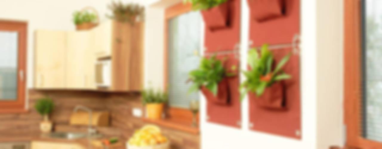 de estilo  por Butik Bahçe Dikey Bahçe ve Peyzaj Tasarımları