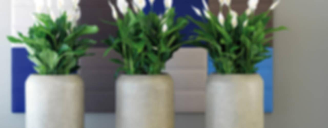Projekty,   zaprojektowane przez fleur ami GmbH