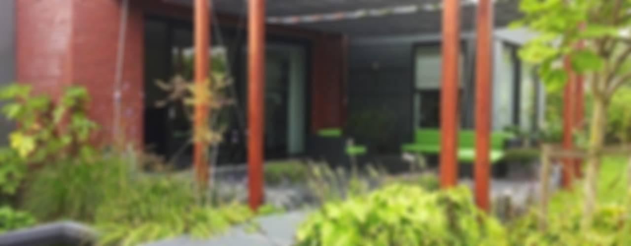 modern  von Bladgoud-tuinen, Modern