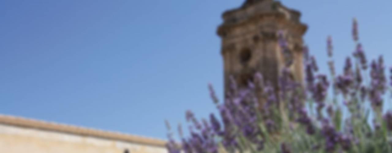 Сад в средиземноморском стиле от otragiardini Средиземноморский
