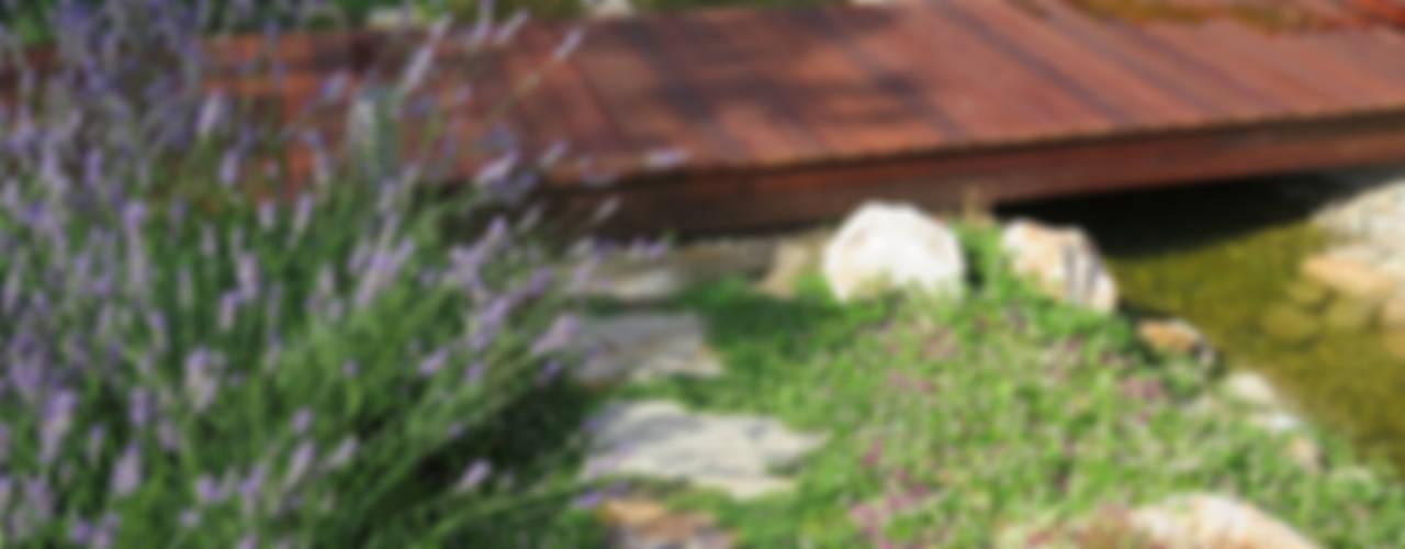 Jardines de estilo  por LANDSHAFT