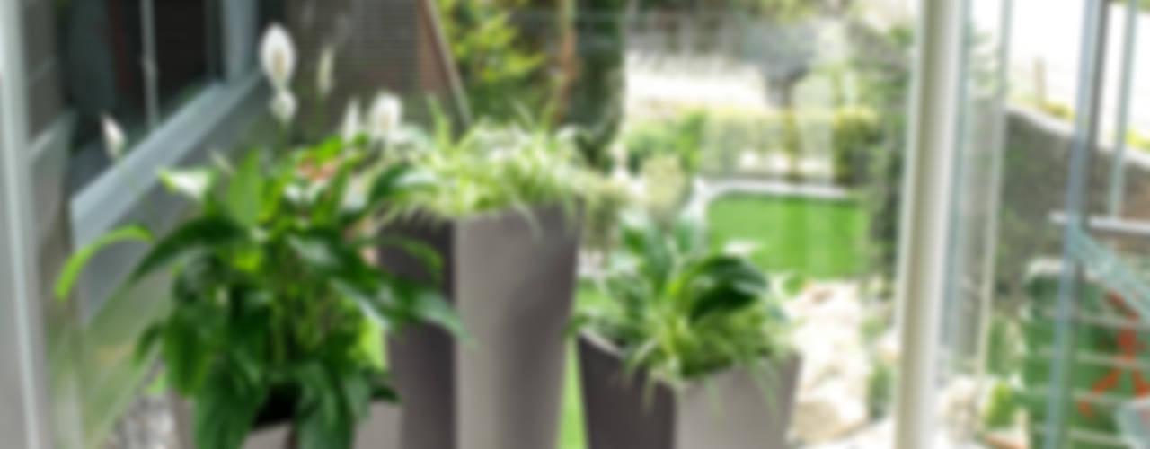 Pflanzkübel Kunststoff Pflanzkübel-direkt GartenBlumentöpfe und Vasen