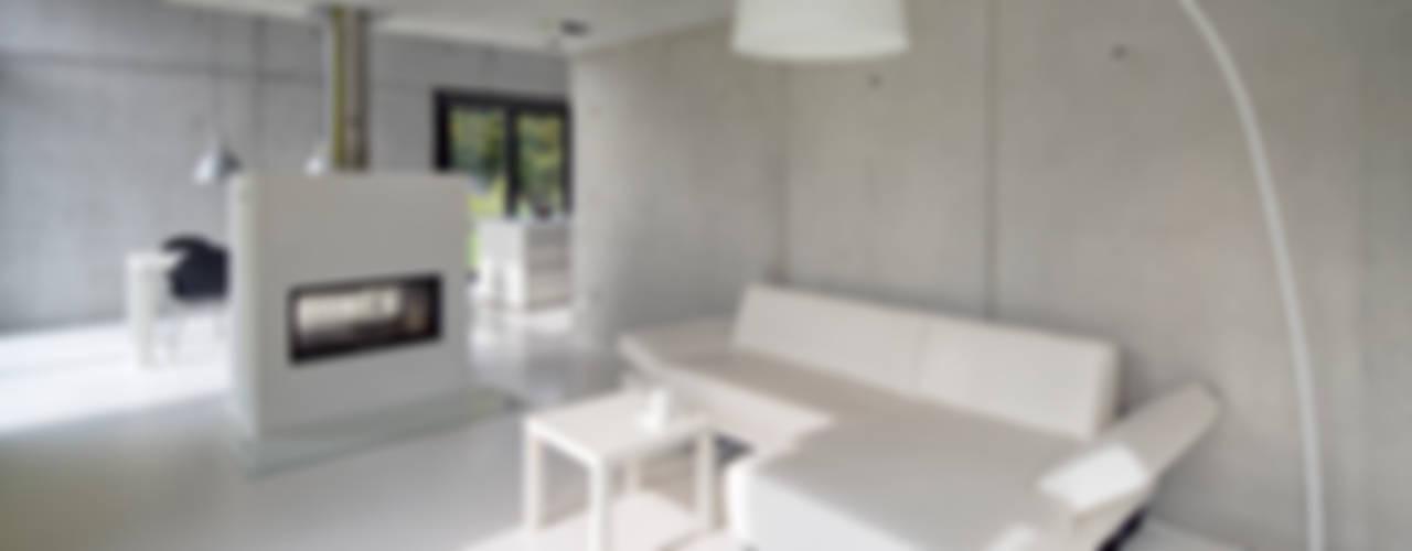 Einfamilienhaus KN08 auf dem Schurwald Moderne Wohnzimmer von Schiller Architektur BDA Modern