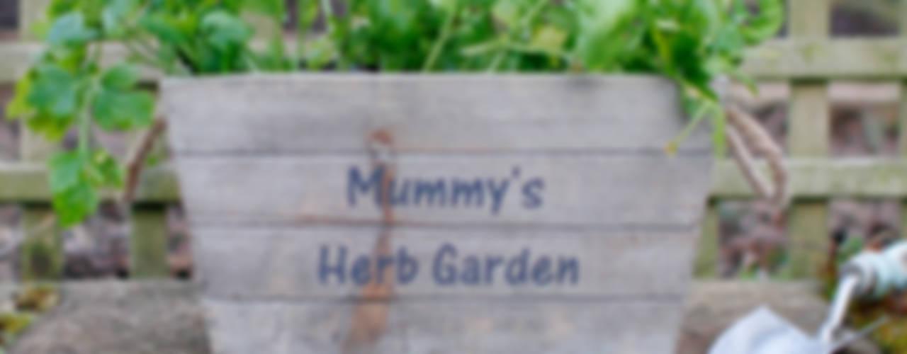 Garden Essentials Jonny's Sister Garden Plant pots & vases
