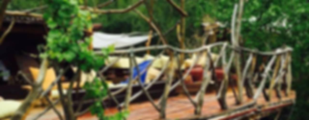badem ağacı – Reflections Camp:  tarz Teras