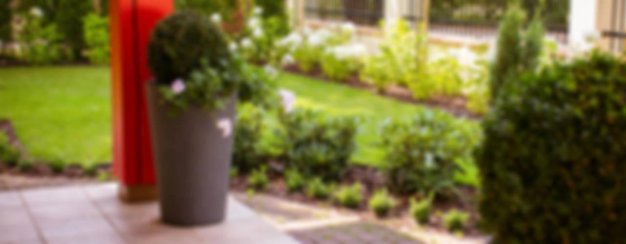 Garden by Miejskie Ziele, Classic