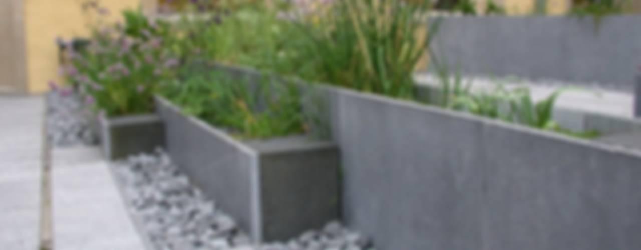 Modern Garden by Digitale Paysage Modern
