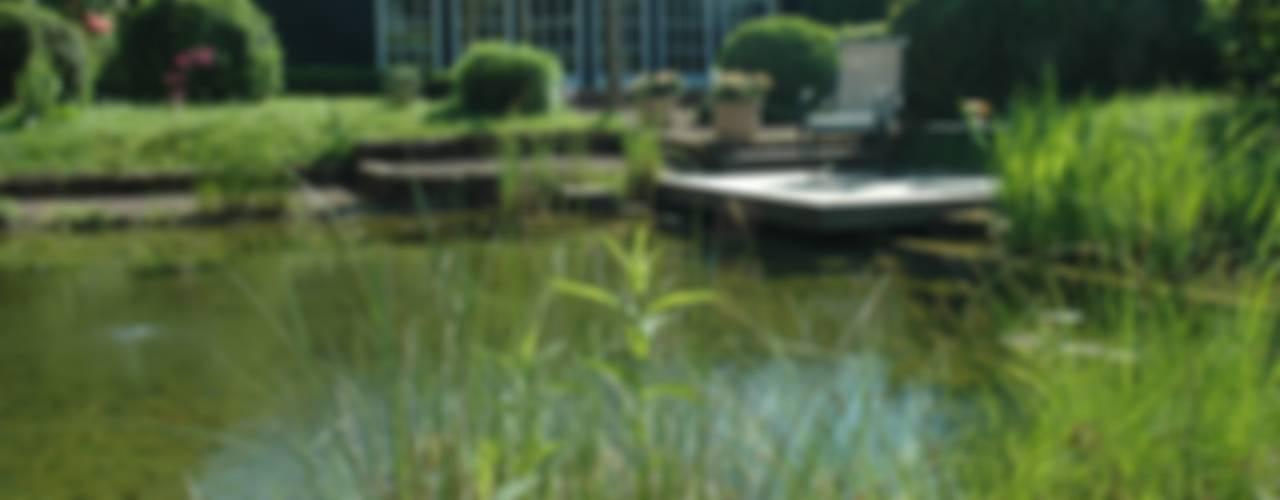 Ogród Architektura krajobrazu- naturalne systemy uzdatniania wod Nowoczesny ogród