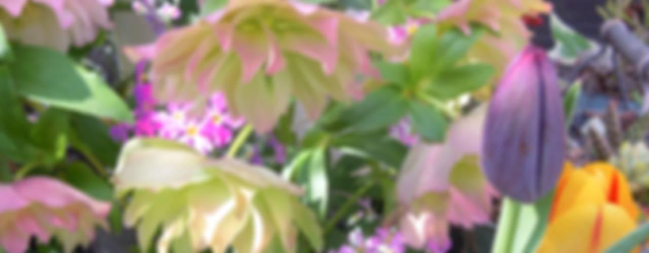 Green Team : Green Team  coが手掛けた庭です。,クラシック