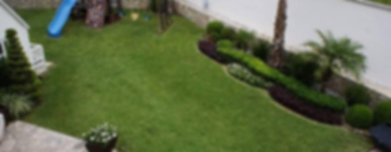 Jardines de estilo minimalista de InGarden Minimalista