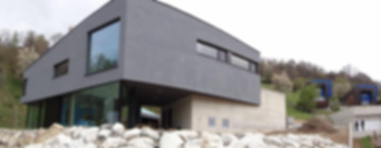 Einfamilienhaus Ambort, Naters, Schweiz Architekt: Rene Grünwald & Balzani Diplomarchitekten ,Brig, Schweiz Moderne Häuser von Balzani Diplomarchitekten Modern