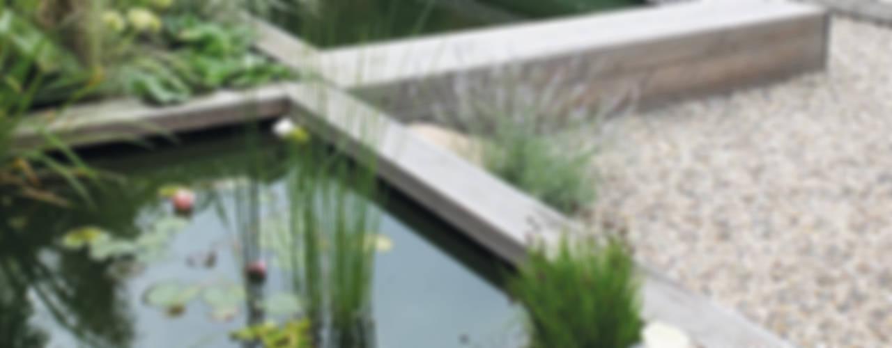 Jardines de estilo  por qbus architektur  & innenarchitektur