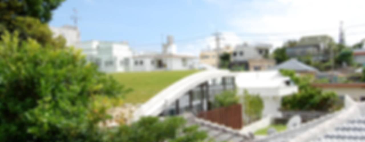 屋上緑化した屋根: Atelier Neroが手掛けた家です。