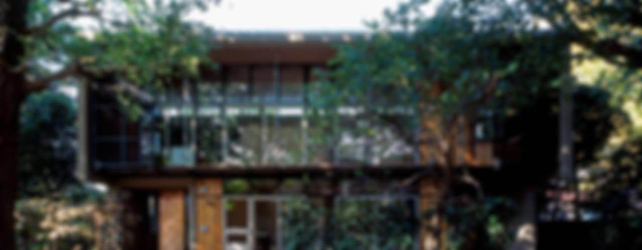 大銀杏の家 モダンな 家 の HAN環境・建築設計事務所 モダン