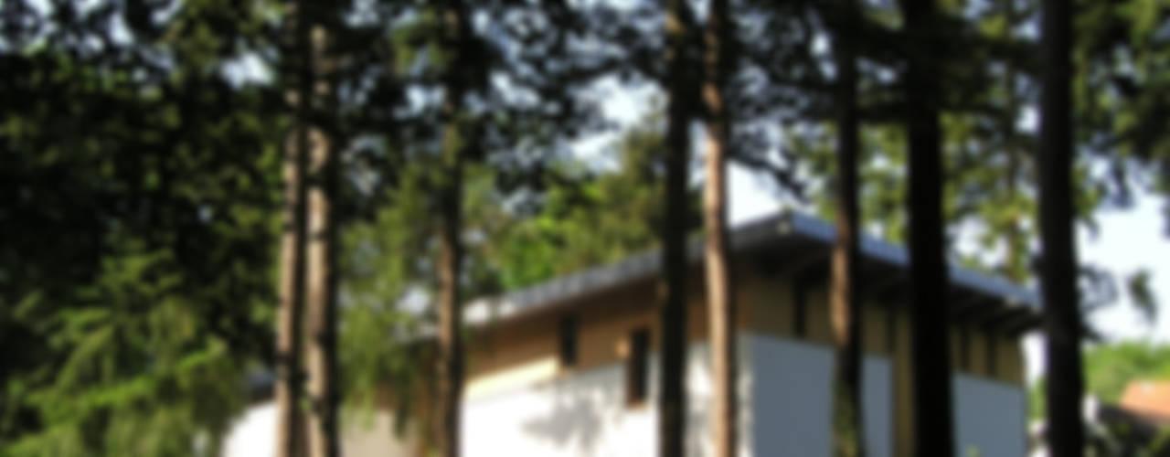 Projekty,  Domy zaprojektowane przez Thijssen Verheijden Architecture & Management
